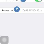 Cara Mengalihkan Panggilan di iPhone ke Nomor Lain (4)