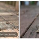 Adu Kualitas Hasil Foto Kamera iPhone 7 Plus vs DSLR