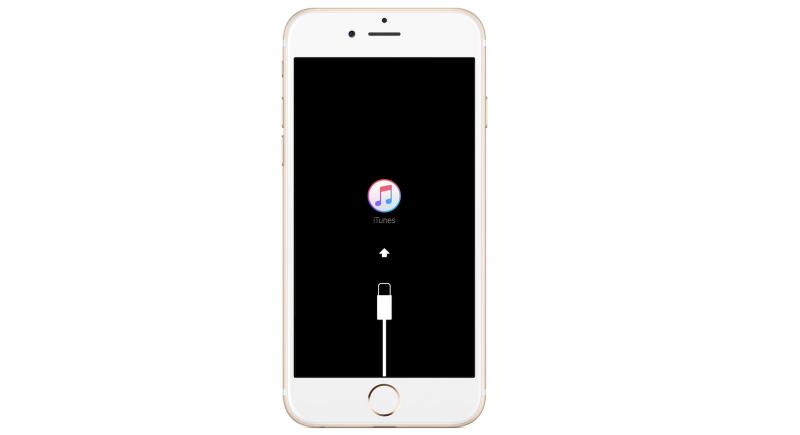Cara Masuk ke Recovery Mode di iPhone dan iPad