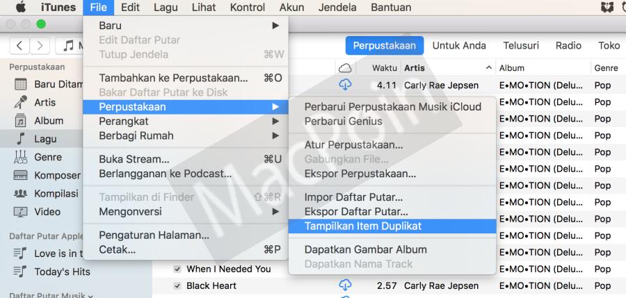 Cara Menampilkan File Duplikat di iTunes PC dan Mac