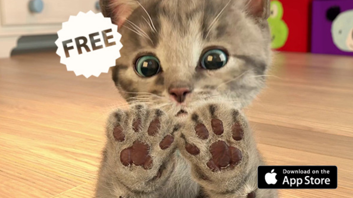Download Gratis Little Kitten My Favorite Cat Minggu Ini