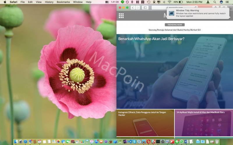 Cara Mudah Atur Jendela Aplikasi Mac Pakai Window Tidy