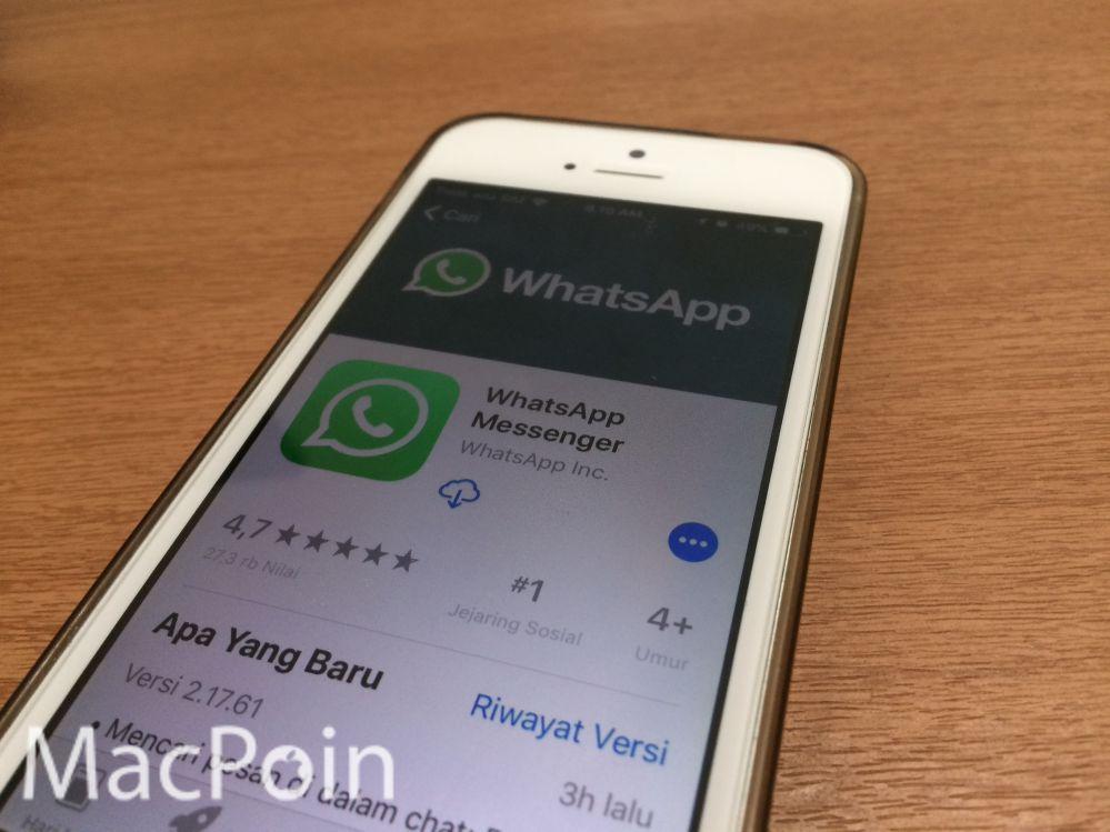 Update WhatsApp Terbaru Perbaiki Masalah Notifikasi di iOS 11