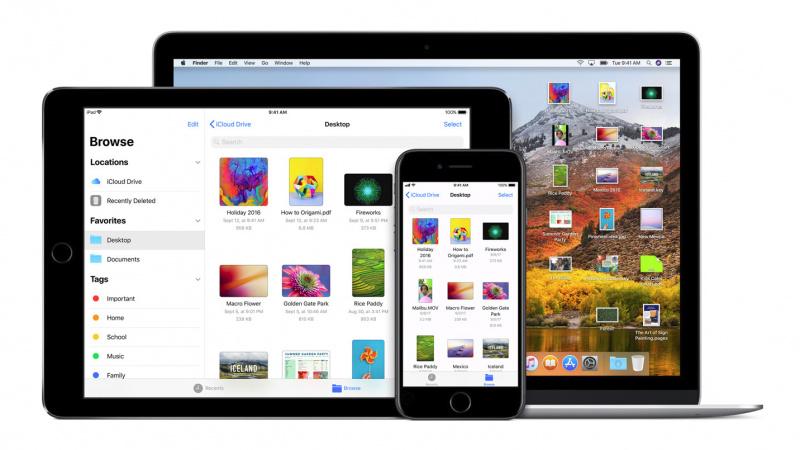 Apple Masih Belum Punya Rencana Satukan iOS dan macOS